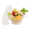 Comatec  Frosted Plastic Bowl - 4.25 x 2 inch
