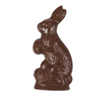 Rabbit Molds